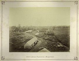 StateLibQld 2 239558 Raff's Sugar Plantation, Morayfield, Queensland, 1874.jpg