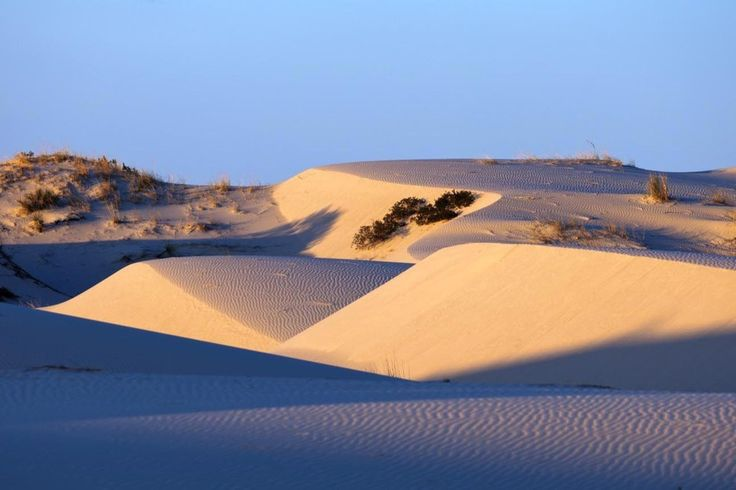 Monahans State Park ~ The Monahans Sandhills are a series of mesmerizing sand dunes located near the New Mexico border in West Texas. The park is comprised of 3,840 acres of sand that is constantly transforming due to wind patterns and rain.
