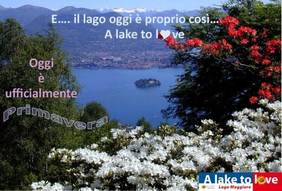 Primavera al Lago Maggiore – E' arrivata!