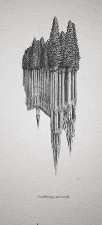 Evan Wakelin's drawings and stuff