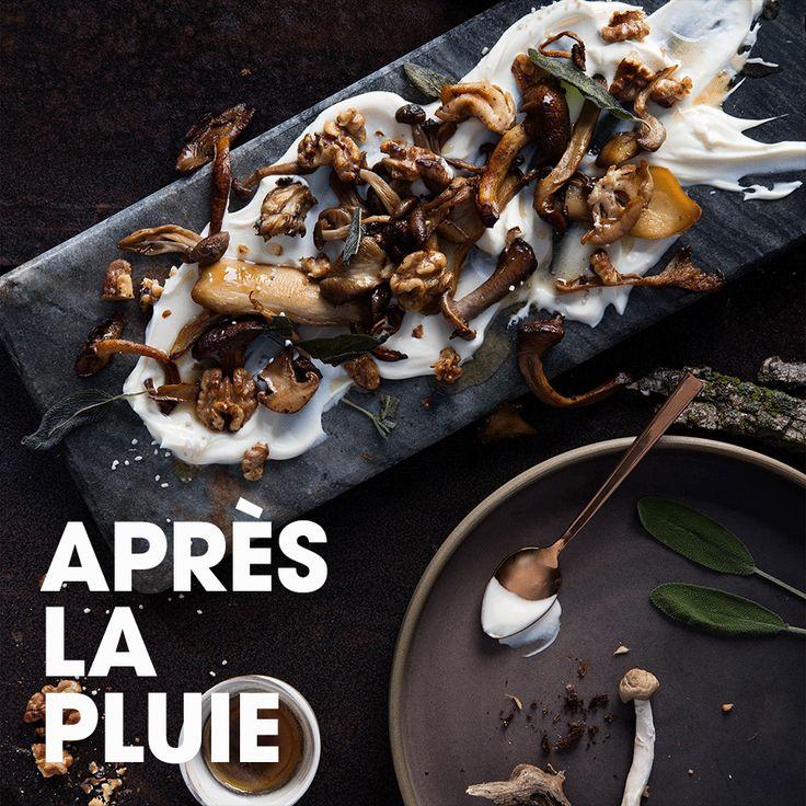 Après la pluie #crème #fraîche #champignon #beurre #noisette #sauge #sel #noix