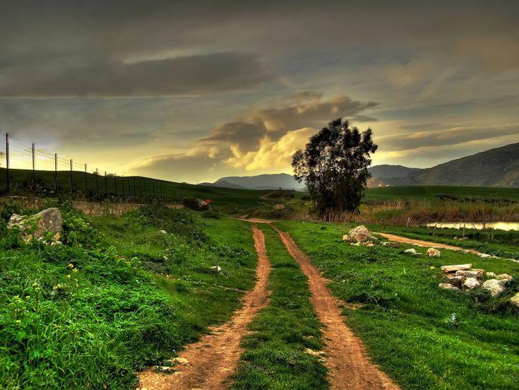 gotta love them old dirt roads <3