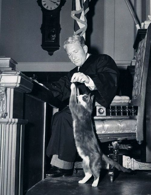 Spencer Tracy and Man's Catsle
