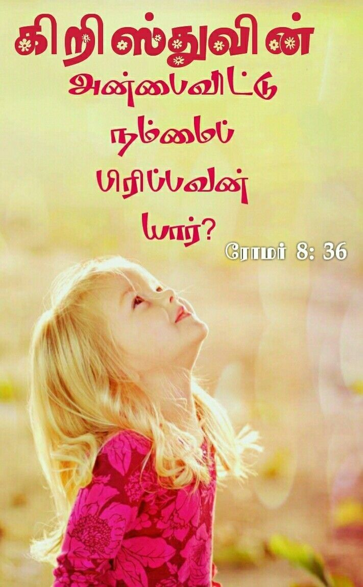 Pin by Malar Tr on Bible verses: my likes in Tamil | Bible