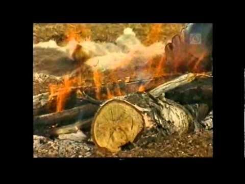 Saamelaiset, ohjelmia Pohjoisesta - YouTube
