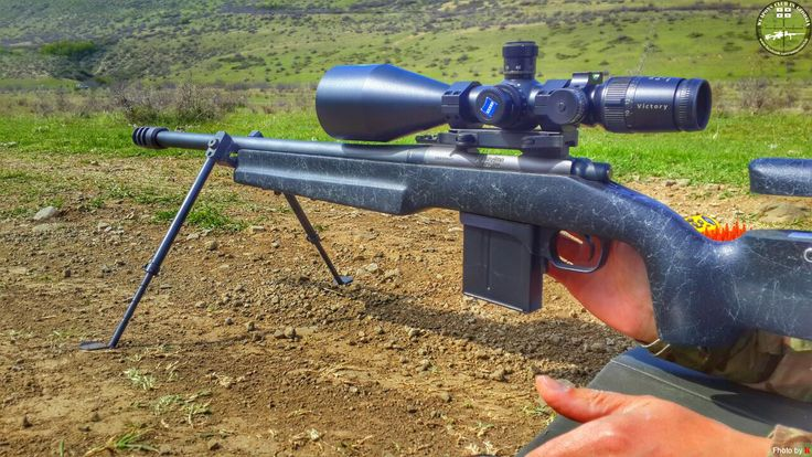 Remington 700 .308w ZEISS Hunting Victory Diavari 6-24x72