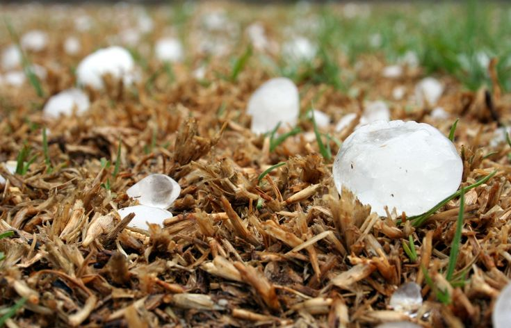 #climate #damage #disaster #hail #hailstone #hailstorm #highveld #meteorology #natural disaster #south africa #storm #storm damage #weather