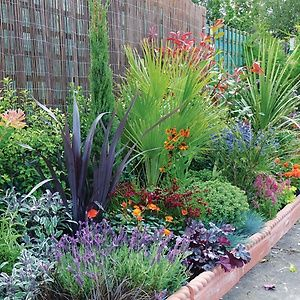 Our mediterranean border from our range of 'garden on a roll' find out more here: http://bit.ly/1JRl8fJ