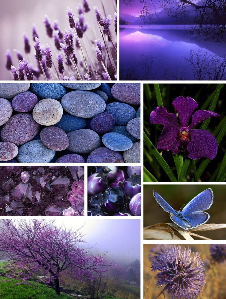 Purple Mood 54 best mood boards - createdme images on pinterest | mood