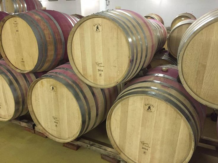 Feel like a wine-grower at the Zevenwacht Wine Estate visiting the cellar. Coming from France or the United States, these barrels contains the next vintages. There, you will be able to ask all questions you may have about the wine making.
