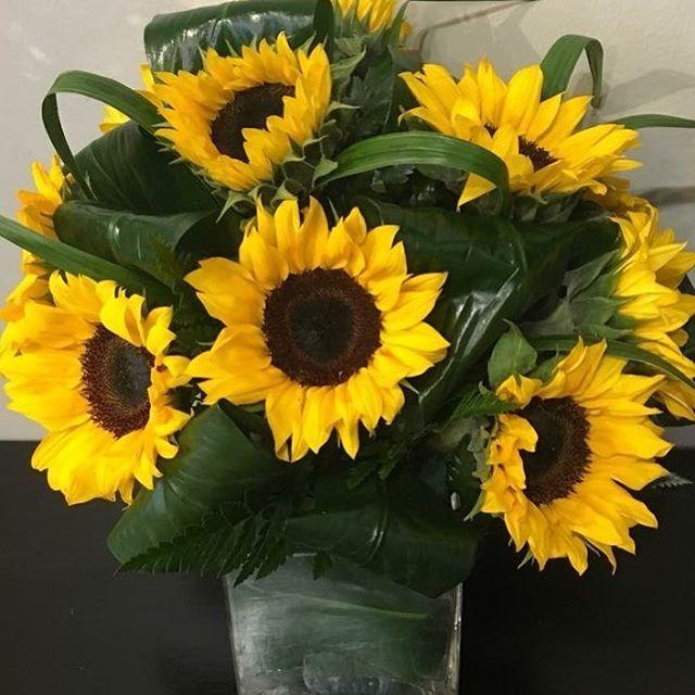 Sunday Sunflowers Sunflowers Floraldesign Flowerdelivery Localflorist Battlecreek Cerealcity Plumeriabb Flower Delivery Plumeria Send Flowers Online