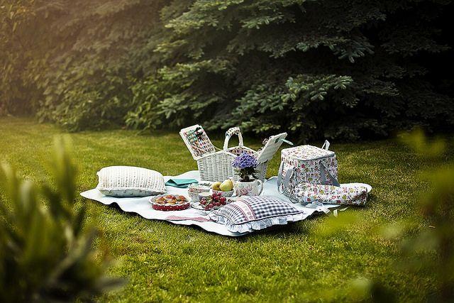 kamarian photography / picnic