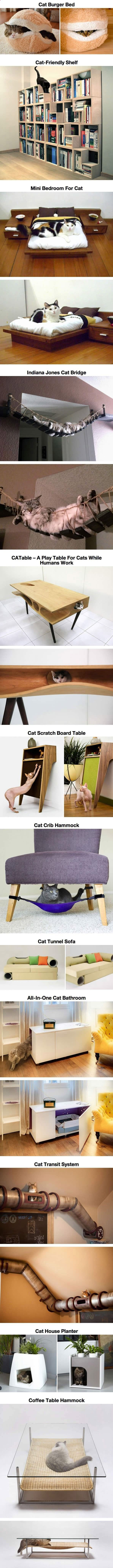 Cats Toys Ideas - Ein Paradies für Katzen Teil 1 | Webfail - Fail Bilder und Fail Videos - Ideal toys for small cats
