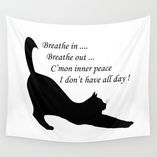 Inner peace funny cat - breathe in and breathe out