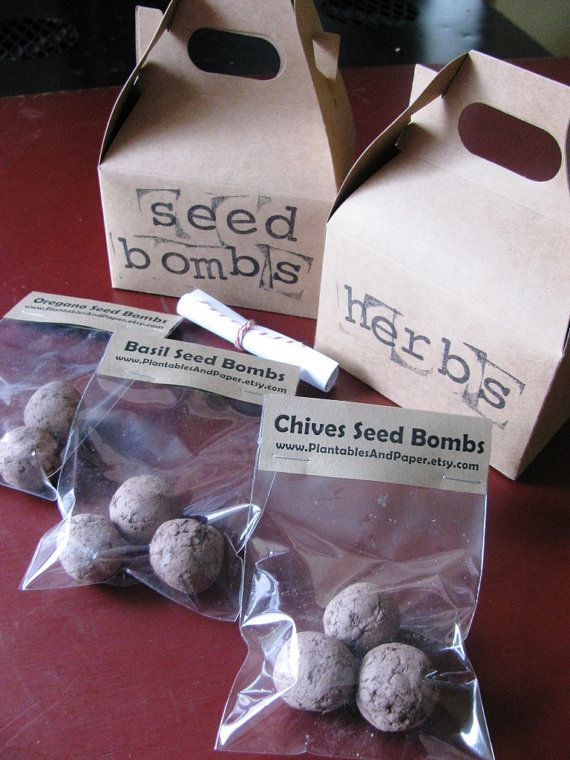 Mini Herb Seed Bombs - {Includes 3 seed bombs each of Oregano, Basil, and Chives} - Seed bombs are the perfect gift for your favorite gardener. Seeds are embedded in balls of clay, compost and soil. Can be planted indoors or outdoors in warm weather. Great for container herb gardens.