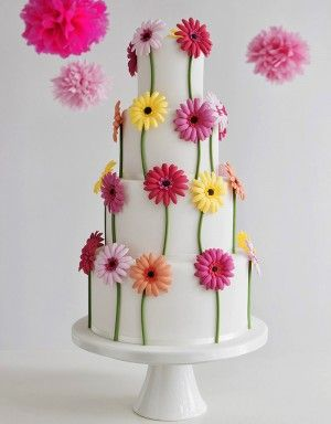 "Gerbera Cake--""I love daisies.  They're so friendly.  Don't you think daisies are the friendliest flower?:"