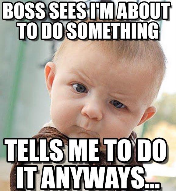 Pin By Ashokkumar Venkatraman On My Saves Boss Humor Funny Memes Work Humor