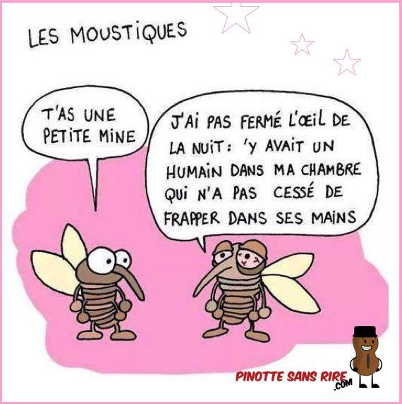 Les moustiques