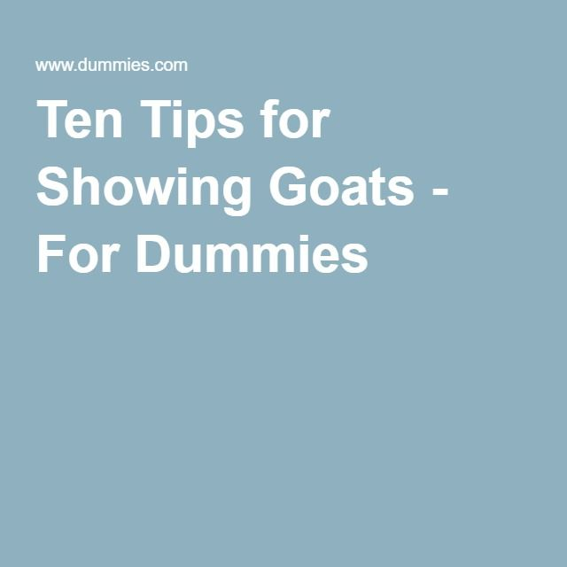 Ten Tips for Showing Goats - For Dummies