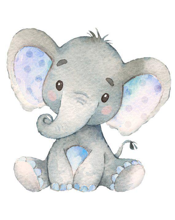 Pin de lore herrera en elefantitos elefante para ni os - Fotos de elefantes bebes ...