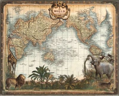 for my world map safari room