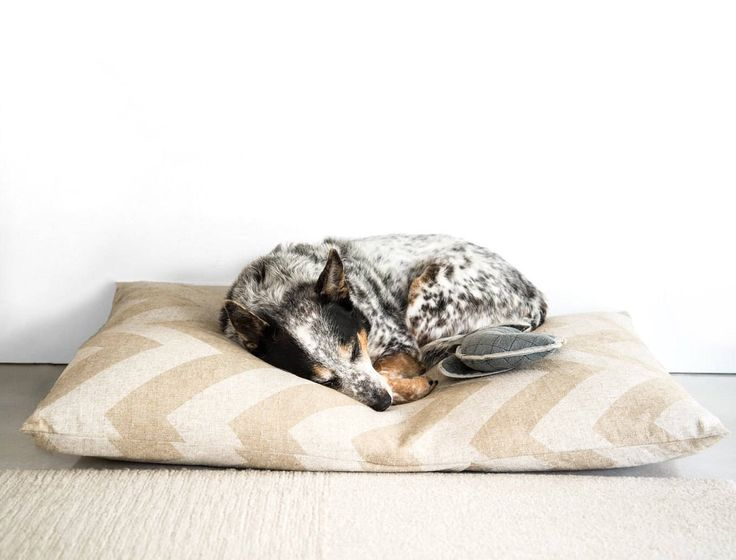 Natural Chevron Dog Bed Cover, Pet Bed Cover, Custom Dog Bed Duvet Cover, Modern Pillow-Style Dog Bed Cover for Small to Large Dog Beds by thefoggydog on Etsy https://www.etsy.com/listing/179664669/natural-chevron-dog-bed-cover-pet-bed