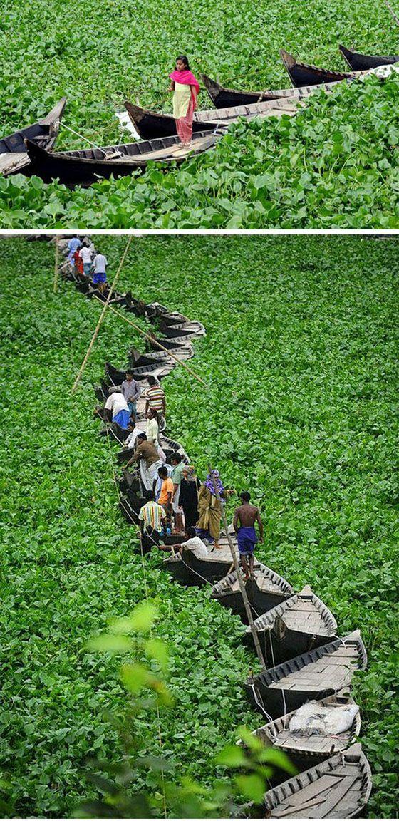 Floating Boat Bridge in Bangladesh- walk across a floating boat bridge on the Buriganga river in Dhaka .