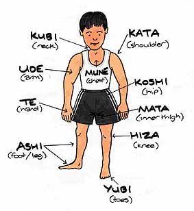 Partes del cuerpo en japonés, ayuda a saberse mejor el nombre de las llaves :) #judo