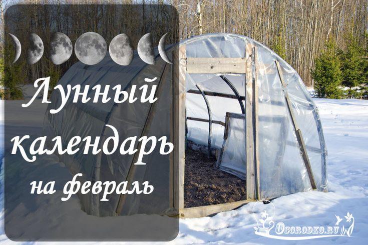 Лунный посевной календарь садовода и огородника на февраль 2017 года