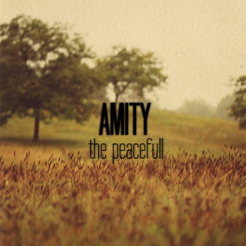 #Amity #Divergent ~Divergent~ ~Insurgent~ ~Allegiant~ {Ashia: my spiritual and enlightened side}