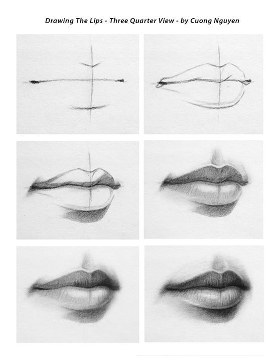 Drawing the lips 3/4 view step by step by Cuong Nguyen https://www.facebook.com/icuong?fref=photo