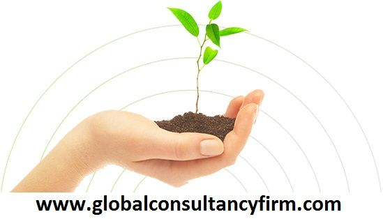 Global Consultancy Firm offers Market entry consultancy services for firms that are seeking assistance to enter into the huge Indian market, and establish their brand names in the sub-continent.