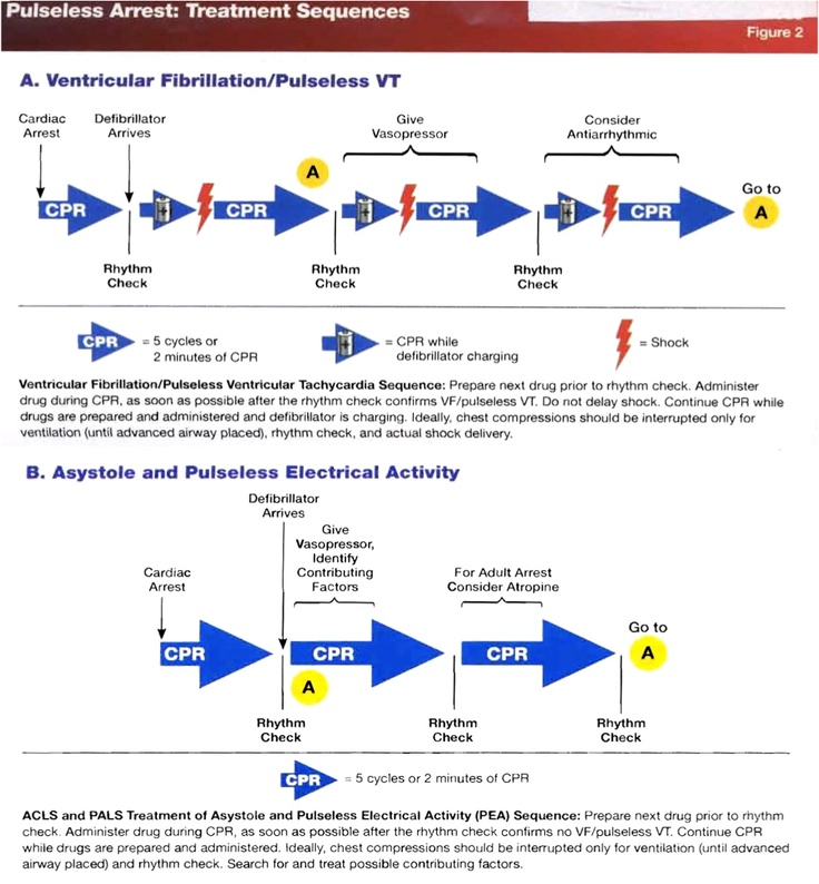 Acls Printable Study Guide 2018 Free ACLS 2019