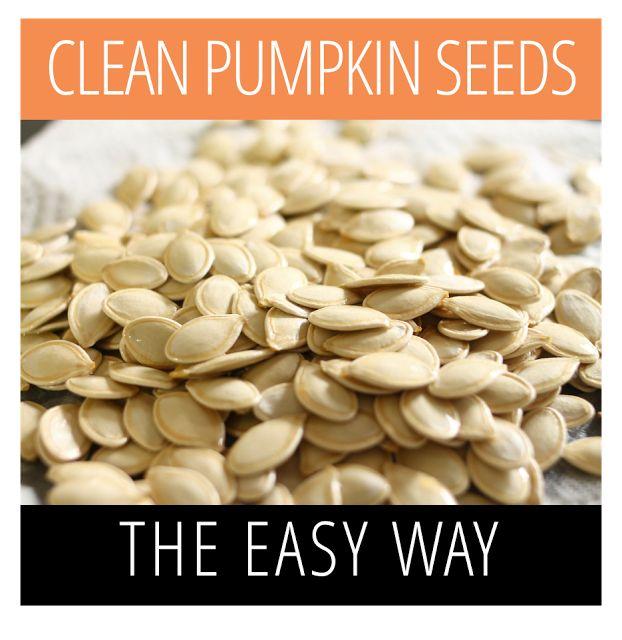 Clean Pumpkin Seeds The Easy Way | www.makeithandmade.com