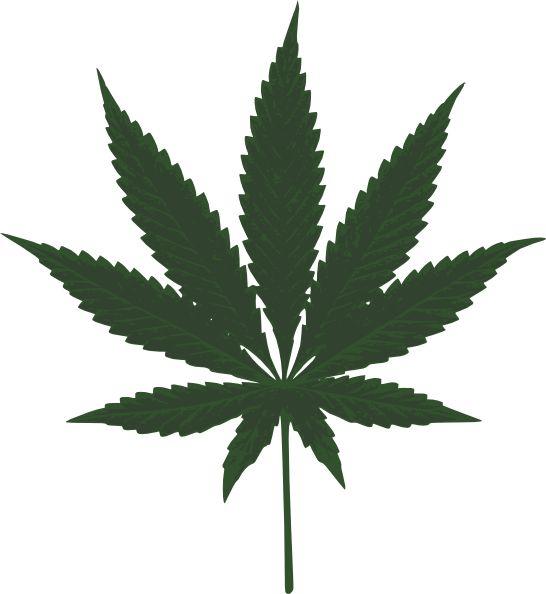http://www.clker.com/cliparts/e/7/b/e/11971240931254216407kotik_cannabis_leafs.svg.hi.png