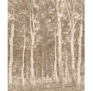 Woods Mural (DM216-1) - Mr Perswall Wallpapers - A truly stunning images of a wood full of trees with an almost etching-like quality to the design – available in 4 colourways – shown in sepia brown.  Total mural size 2.70m wide x 2.65m high - NOT AS STATED BELOW.