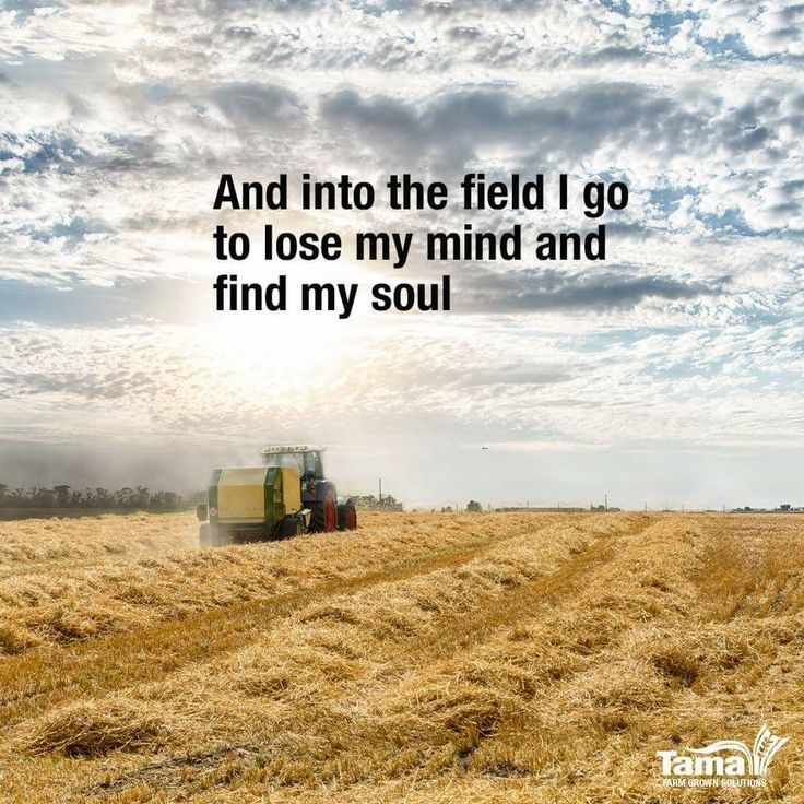 Ag Quote Magnificent 39 Best Ag Inspiration Images On Pinterest  Agriculture Ag Science