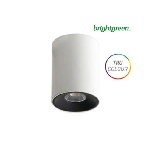 D550 SH TRU-COLOUR 8w LED Surface Mounted Downlight Curve Brightgreen, $99.00