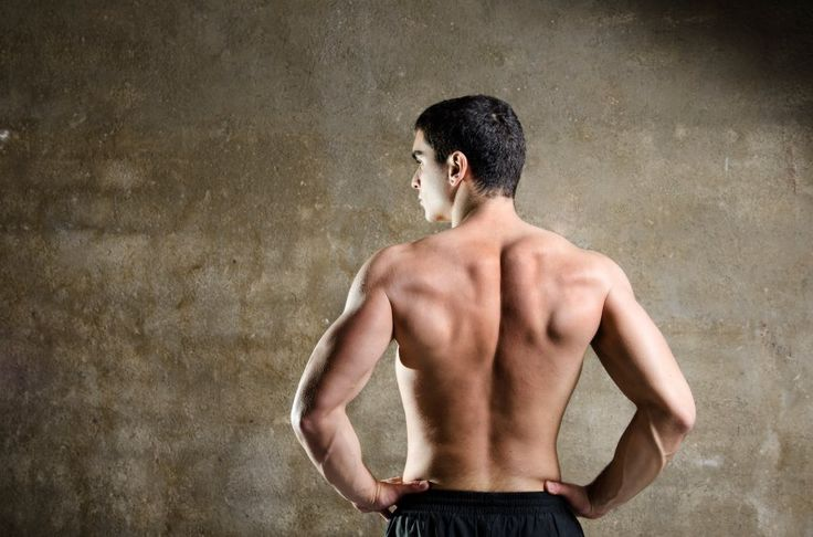 Ready to build your back muscles? | iStock.com We all want to be able to squat and deadlift like cro-mags while also showing off a chiseled chest, arms, and abs. When you look at yourself in the mirror, you want to be somewhat impressed you want to see validation that all the hard work you ve [ ] More