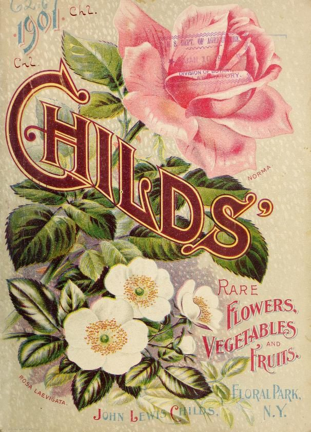 Childs' rare flowers, vegetables & fruits