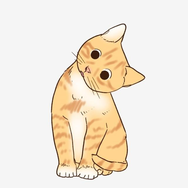Cat Orange Cartoon Mascotas Dibujos Animados Mascota Png Y Psd Para Descargar Gratis Pngtree Cartoon Cat Drawing Cat Background Cartoon Drawings
