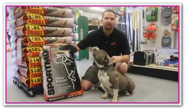Best Wet Dog Food For Pitbull Puppies Best Puppy Food Wet Dog