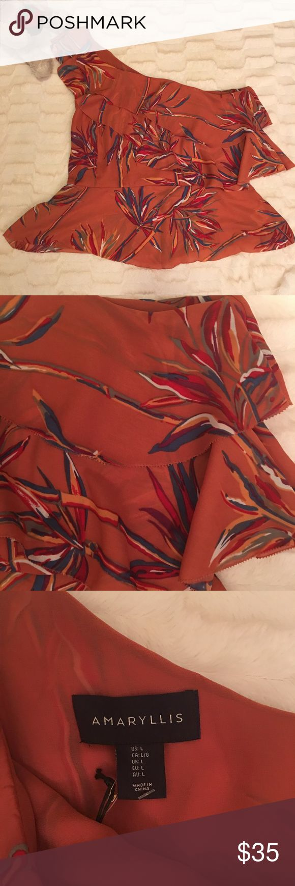 ANTHROPOLOGIE Amaryllis One Shoulder Double Ruffle This beauty features one shoulder styling with double ruffles at the top and a peplum at the bottom. Side zipper opening. Color is a rich rust with a floral pattern of blues reds and white.  Bust 20 in Anthropologie Tops Blouses