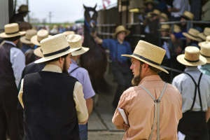 Image detail for -Six People Killed In Amish School Shooting