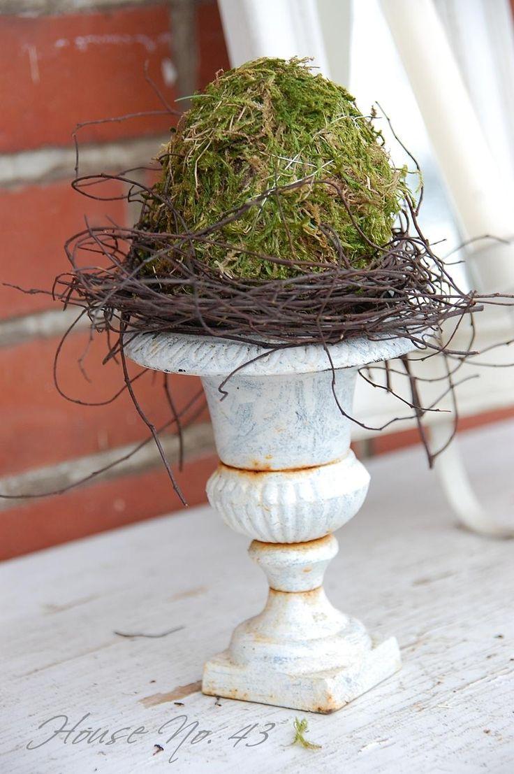 Moos Deko /moss decoration