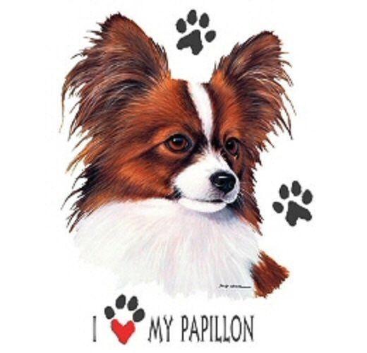 Love My Papillon Dog HEAT PRESS TRANSFER for T Shirt Sweatshirt Tote Fabric #890 #AB