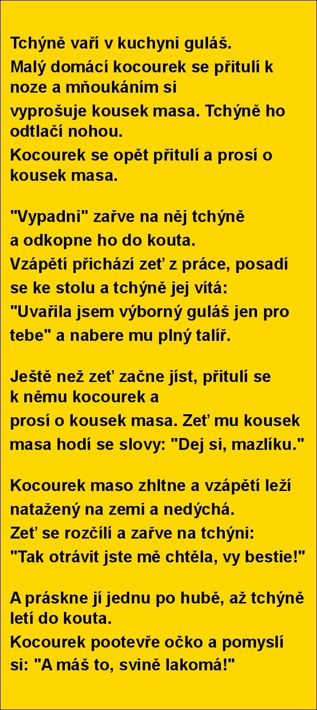 Tchýně vaří v kuchyni guláš... | torpeda.cz - vtipné obrázky, vtipy a videa