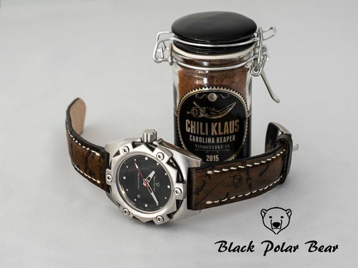 Chili Vs. Black Polar Bear