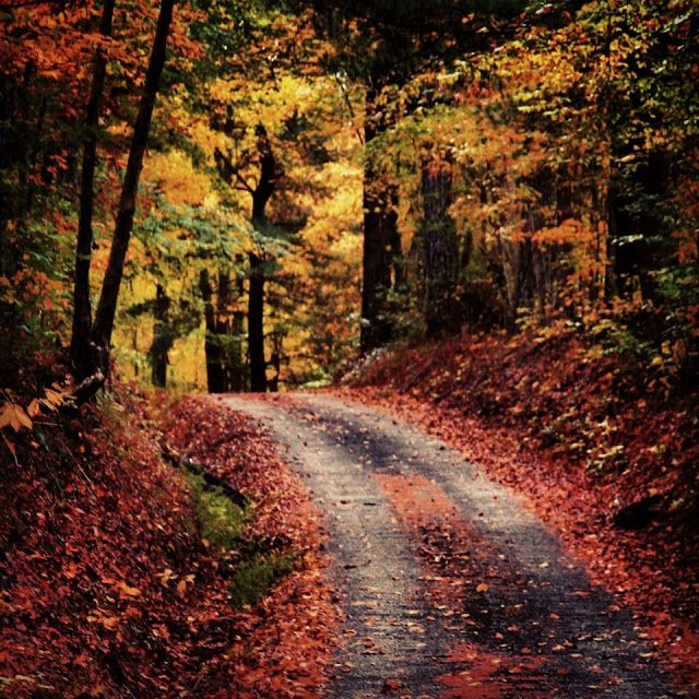 8 Best Fall Scenery Images On Pinterest
