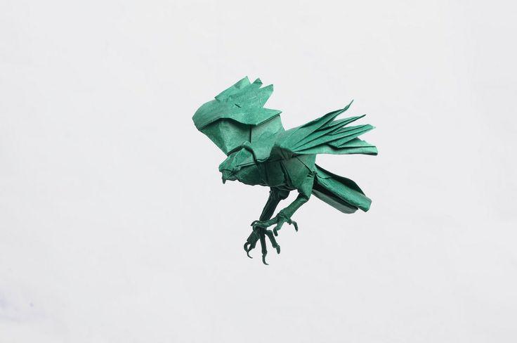 Cooper's hawk-Seth Friedman | by Ivan Svatko